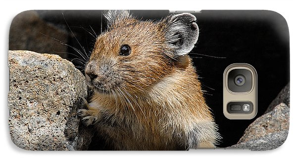 Galaxy Case featuring the photograph Pika Looking Out From Its Burrow by Jeff Goulden