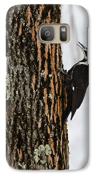 Galaxy Case featuring the photograph Pileated Woodpecker by Skip Tribby