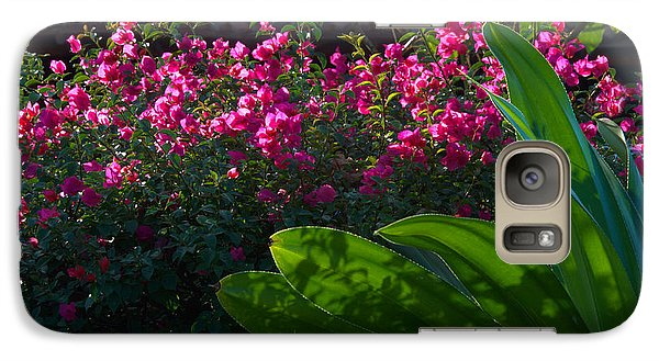 Galaxy Case featuring the photograph Pink And Green by Jim Walls PhotoArtist