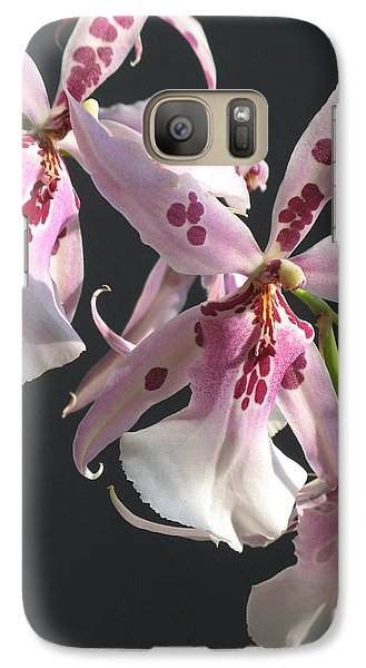 Galaxy Case featuring the photograph Pink And White Orchid by Alfred Ng