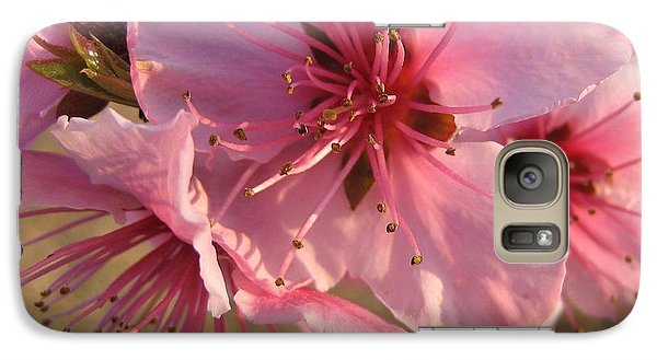 Galaxy Case featuring the photograph Pink Blossoms by Barbara Yearty