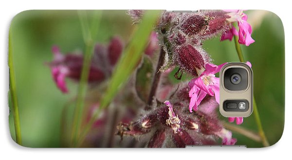 Pink Campion In August Galaxy S7 Case