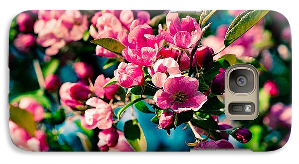 Galaxy Case featuring the photograph Pink Crab Apple Flowers by Alexander Senin