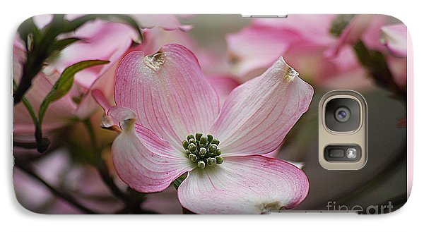 Galaxy Case featuring the photograph Pink Dogwood 20120415_70a by Tina Hopkins