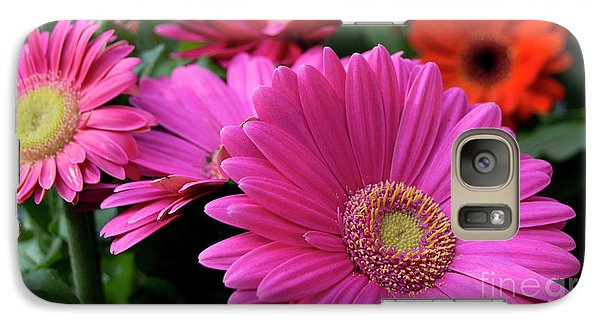 Galaxy Case featuring the photograph Pink Flowers by Brian Jones