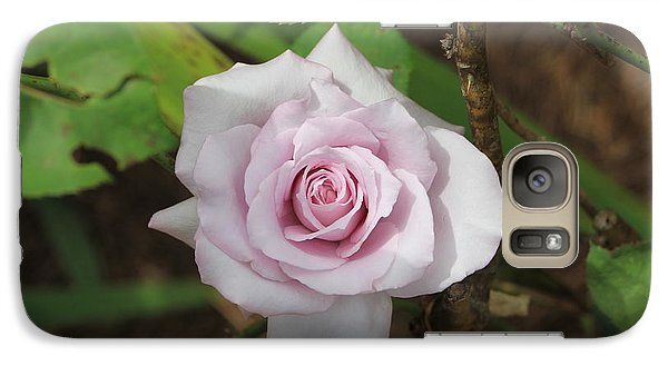 Galaxy Case featuring the photograph Pink Rose by Jerry Battle