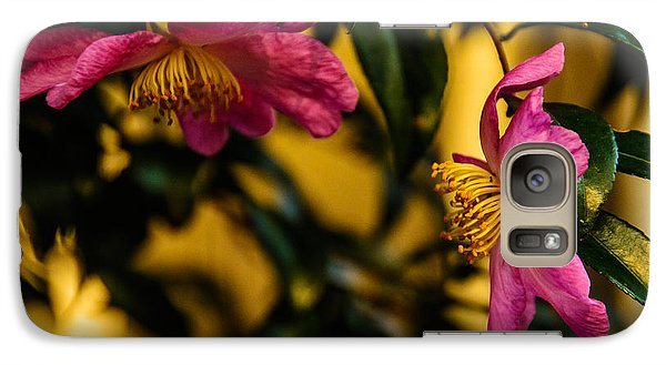 Galaxy Case featuring the photograph Pink Sasanquas  by John Harding