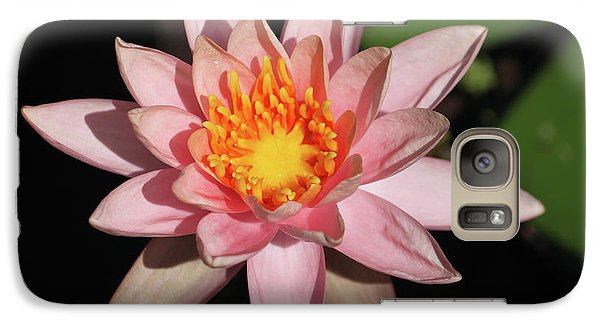 Galaxy Case featuring the photograph Pink Water Lily 2016 by Suzanne Gaff