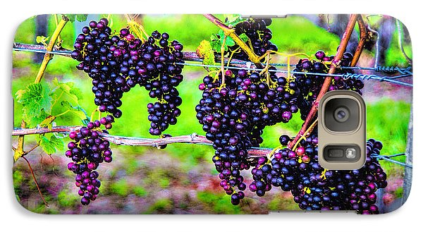 Galaxy Case featuring the photograph Pinot Noir Grapes by Rick Bragan