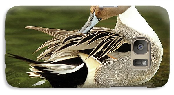 Galaxy Case featuring the photograph Pintail Drake Grooming by Max Allen