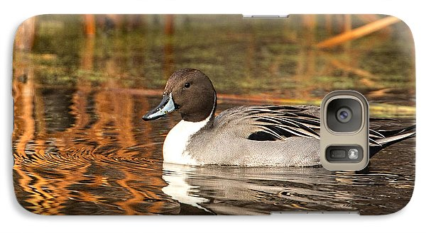 Galaxy Case featuring the photograph Pintail by Kelly Marquardt