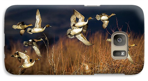 Pintails And Wigeons Galaxy S7 Case
