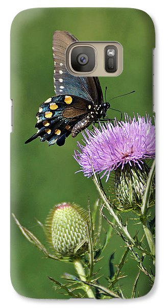 Galaxy Case featuring the photograph Pipevine Swallowtail by Sandy Keeton