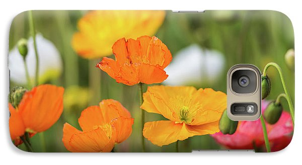 Galaxy Case featuring the photograph  Poppies 1 by Werner Padarin