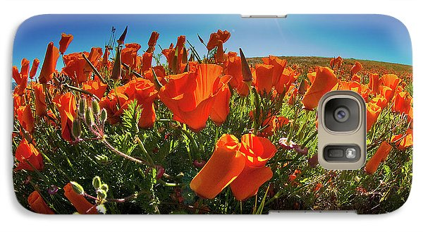 Galaxy Case featuring the photograph Poppies by Harry Spitz