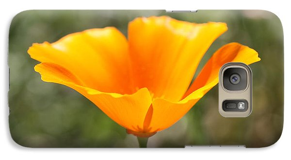 Galaxy Case featuring the photograph Poppy Flower by Cathy Dee Janes