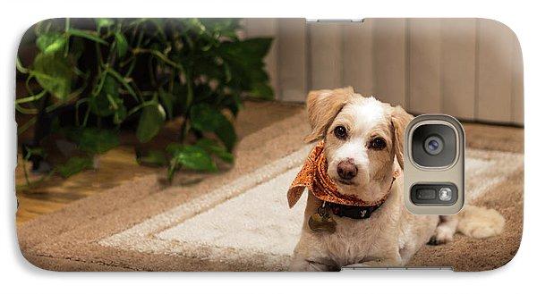 Portrait Of A Dog Galaxy S7 Case