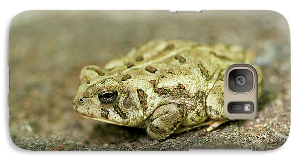 Galaxy Case featuring the photograph Portrait Of A Grumpy Toad - Fowler's Toad by Jane Eleanor Nicholas