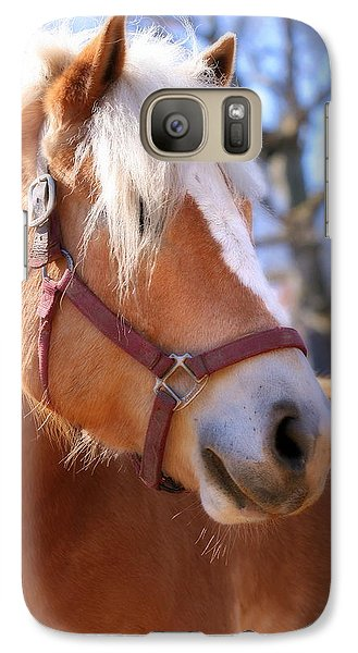 Galaxy Case featuring the photograph Portrait Of A Haflinger - Niko by Angela Rath