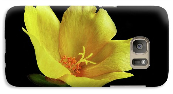 Galaxy Case featuring the photograph Portrait Of A Yellow Purslane Flower by David and Carol Kelly