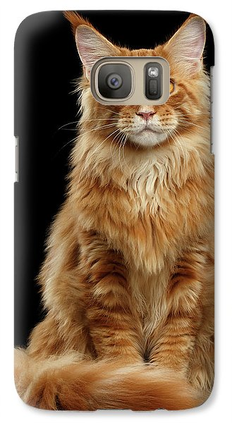 Cat Galaxy S7 Case - Portrait Of Ginger Maine Coon Cat Isolated On Black Background by Sergey Taran