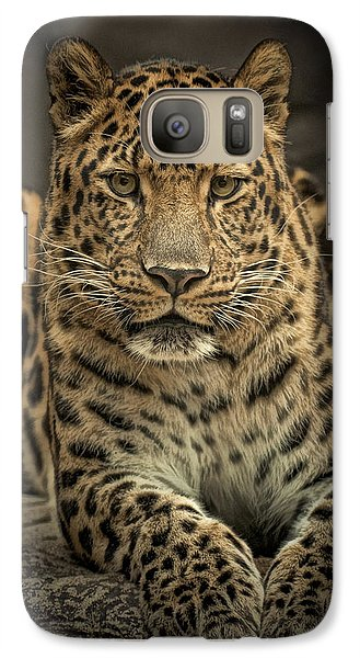 Galaxy Case featuring the photograph Poser by Cheri McEachin