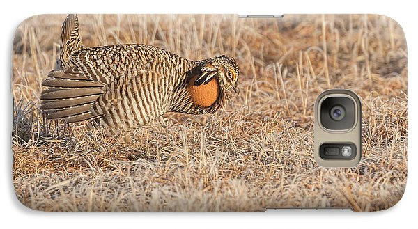 Galaxy Case featuring the photograph Prairie Chicken 10-2015 by Thomas Young