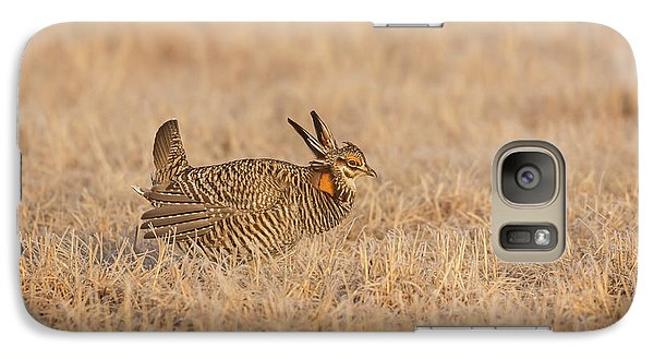 Galaxy Case featuring the photograph Prairie Chicken 7-2015 by Thomas Young