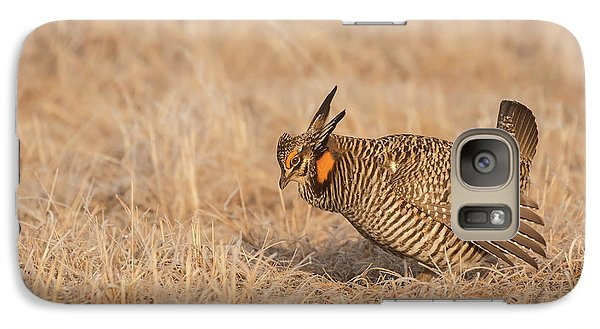 Galaxy Case featuring the photograph Prairie Chicken 8-2015 by Thomas Young