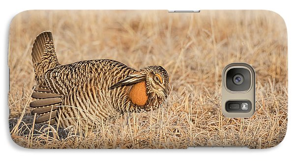 Galaxy Case featuring the photograph Prairie Chicken 9-2015 by Thomas Young