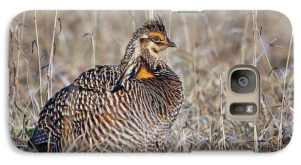 Galaxy Case featuring the photograph Prairie Chicken - Portrait by Nikolyn McDonald