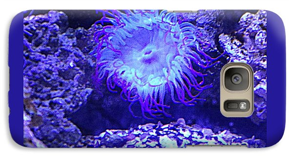 Galaxy Case featuring the photograph Predatory Terrestrial Sea Anemone by Richard W Linford