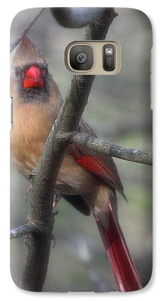 Galaxy Case featuring the photograph Preparations by Rachel Hames