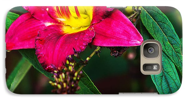 Galaxy Case featuring the photograph Pretty Flower by Edward Peterson