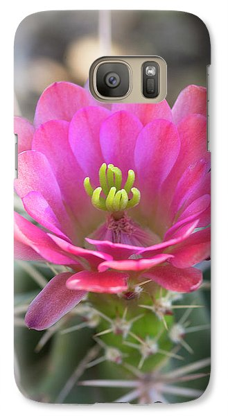 Galaxy Case featuring the photograph Pretty In Pink Hedgehog  by Saija Lehtonen