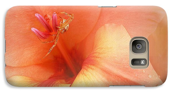 Galaxy Case featuring the photograph Pretty Orange Petals by Kathi Mirto