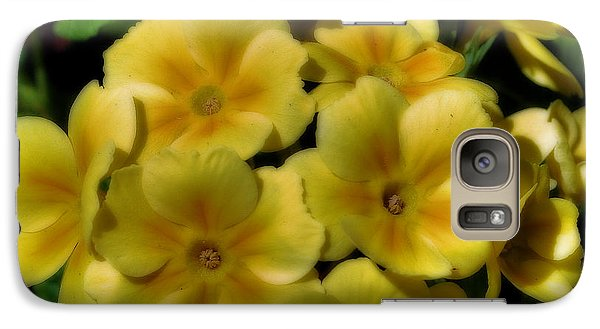 Galaxy Case featuring the photograph Pretty Yellow Primrose by Smilin Eyes  Treasures