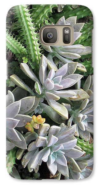 Galaxy Case featuring the photograph Prickly One by Ken Frischkorn