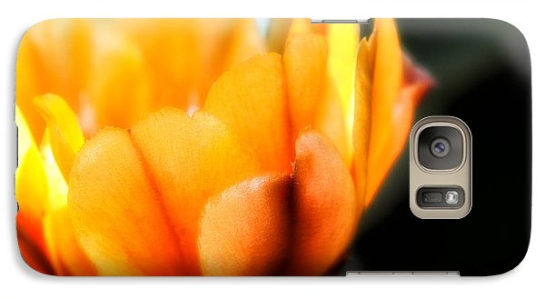 Prickly Pear Flower Galaxy S7 Case by Lynn Geoffroy