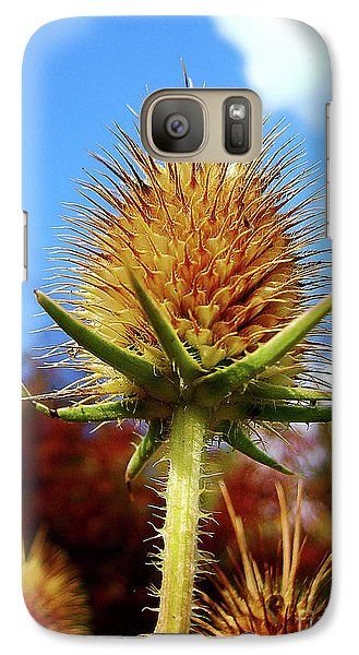 Galaxy Case featuring the photograph Prickly Thistle by Nina Ficur Feenan