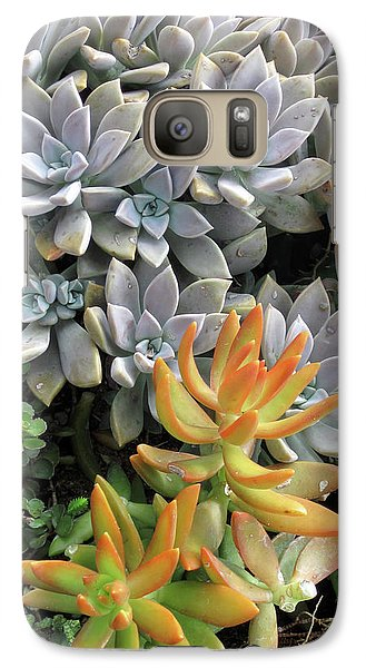 Galaxy Case featuring the photograph Prickly Two by Ken Frischkorn