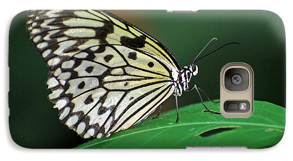 Galaxy Case featuring the photograph Prince Of The Flower  by Teresa Blanton