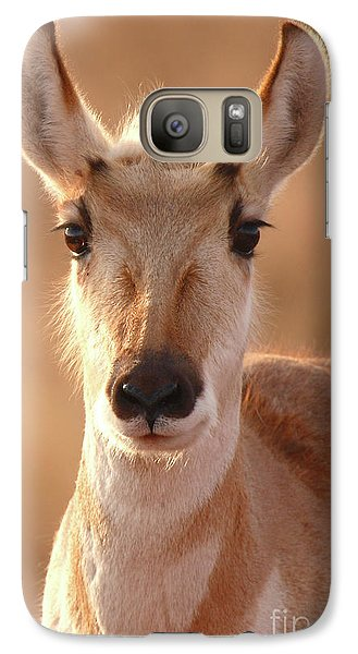 Galaxy Case featuring the photograph Pronghorn Antelope Doe In Soft Light by Max Allen