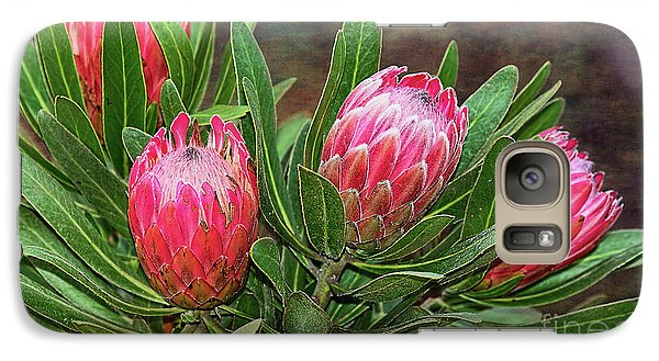Galaxy Case featuring the photograph Proteas In Bloom By Kaye Menner by Kaye Menner