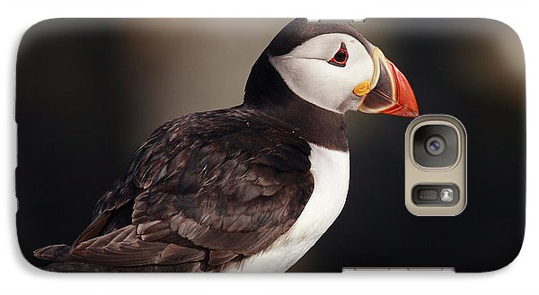 Puffin On Rock Galaxy S7 Case