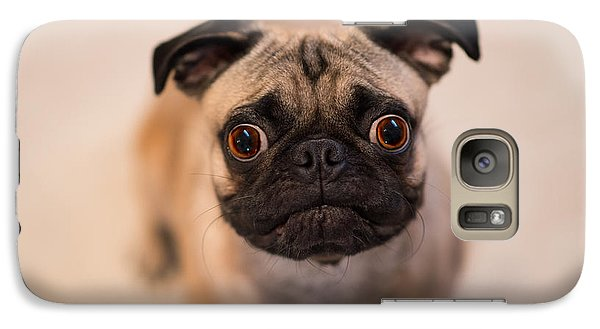 Galaxy Case featuring the photograph Pug Dog by Laura Fasulo