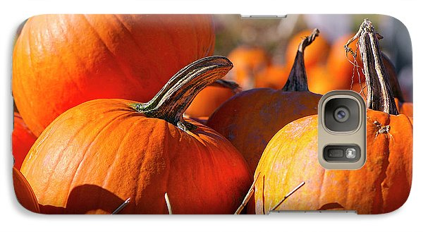 Galaxy Case featuring the photograph Pumpkins 2 by Sharon Talson