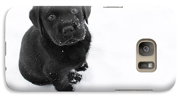 Dog Galaxy S7 Case - Puppy In The Snow by Larry Marshall