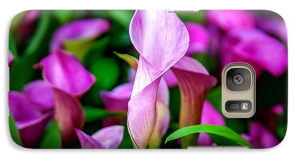 Featured Images Galaxy S7 Case - Purple Calla Lilies by Az Jackson