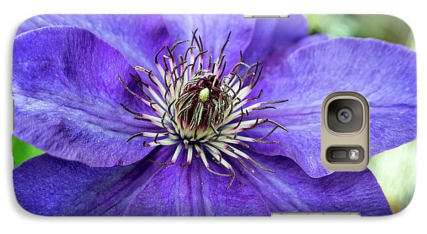 Galaxy Case featuring the photograph Purple Clematis by Chrystal Mimbs